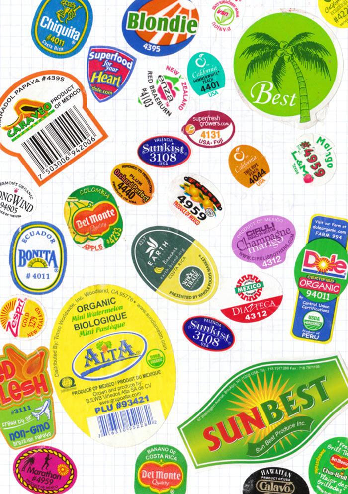 Tattfoo NMS Fruits Label